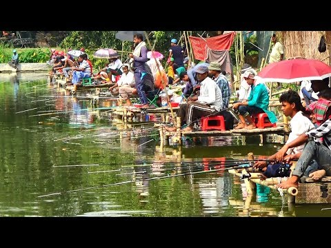 Fishing Competition in Village | Festival Fishing Video By Daily Village Life (Part-11)