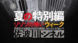ゾゾゾの裏面:不気味過ぎるお化けトンネル!手招きする幽霊が出たら無視しないといけない?佐波川トンネルをレポート!
