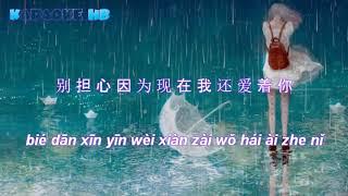 [ Lyrics ] Em Gái Mưa Tiếng Trung   雨妹妹