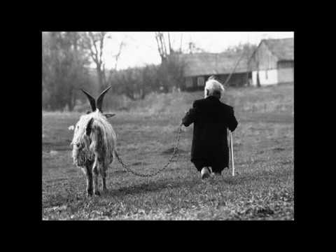 Egomorph - Anomalous Traveler (Original Mix)