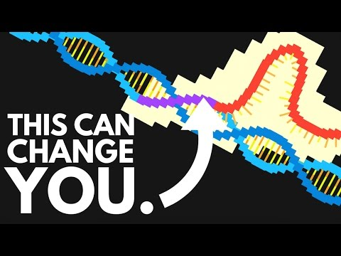 Will Genetic Modification Create Perfect Humans?