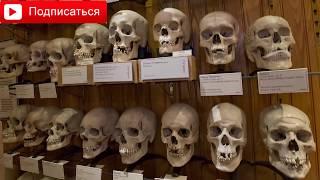 видео Самые-самые музеи мира