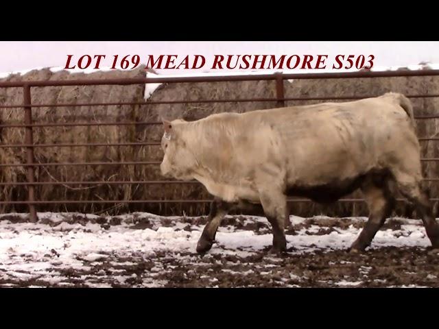 Mead Farms Lot 169