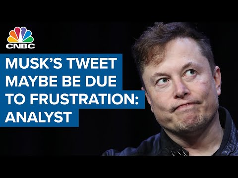 Elon Musk tweet may be due to frustration about economy: Analyst