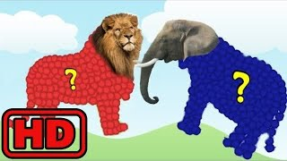 Kid -Kids -Wild Zoo Animals Names And Sounds- New Toy Videos For Kids/Learn Colors/Farm Animal Puzz