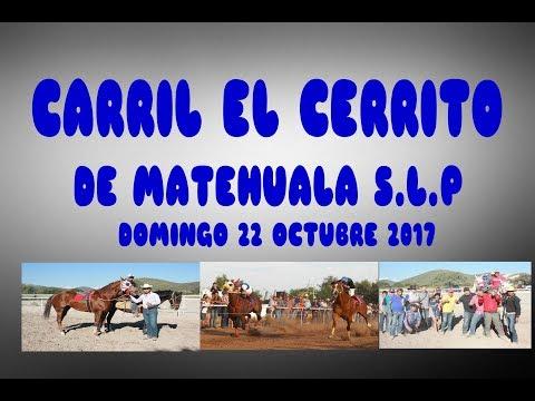 CARRERAS DE CABALLOS CARRIL EL CERRITO 22 OCTUBRE 2017