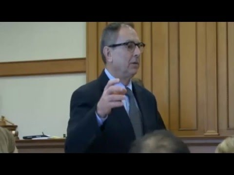 Randall Ross Trial Day 1 (Openings) 01/1116