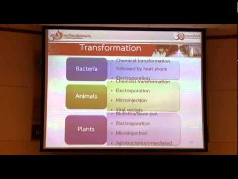2  หลักการและเทคนิคพื้นฐานทางอณูชีววิทยา   ผศ ดร ปรีย์กมล กลั่นฤทธิ์