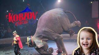Цирк КОБЗОВ программа Woozu Дрессированные СЛОНЫ(Кобзов в Сумах! Сегодня Есения со своим братиком Тимуром покажут вам невероятное представление Woozu цирка..., 2016-06-08T18:15:36.000Z)