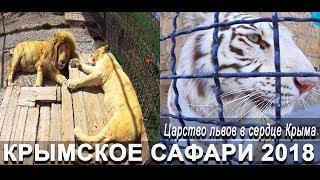 Парк львов Тайган 🔴 Царство львов в сердце Крыма 🔴 Крымское сафари 2018