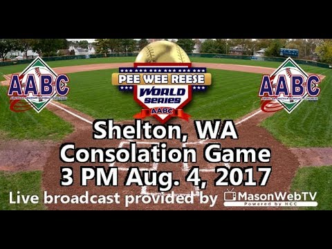 2017 Pee Wee Reese World Series Consolation Game