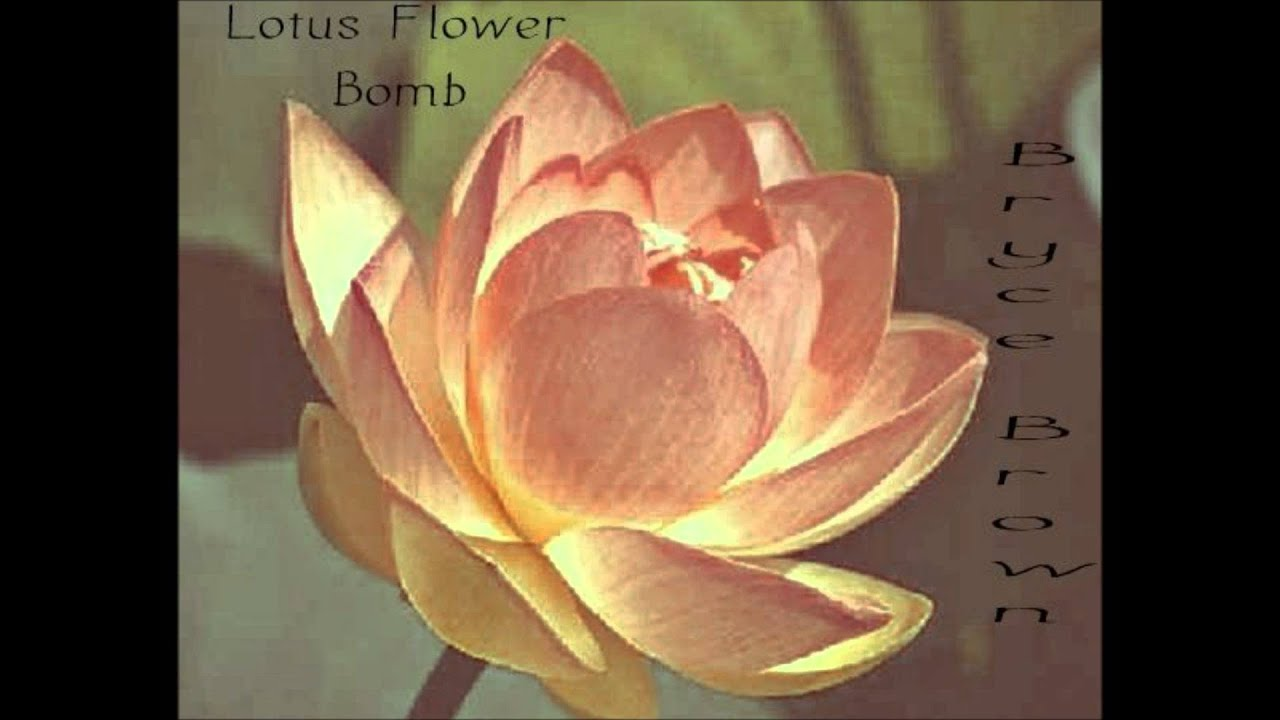 Lotous flowerbomb gardening flower and vegetables bryce brown lotus flower bomb remix youtube izmirmasajfo