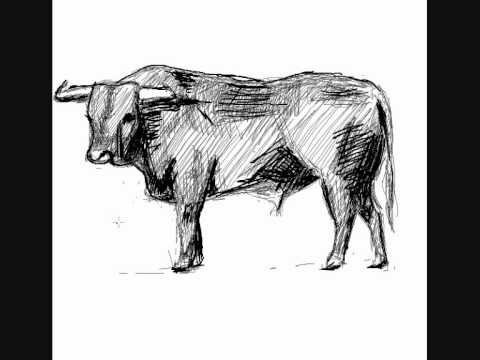 Como Dibujar Un Toro How To Draw A Bull Youtube