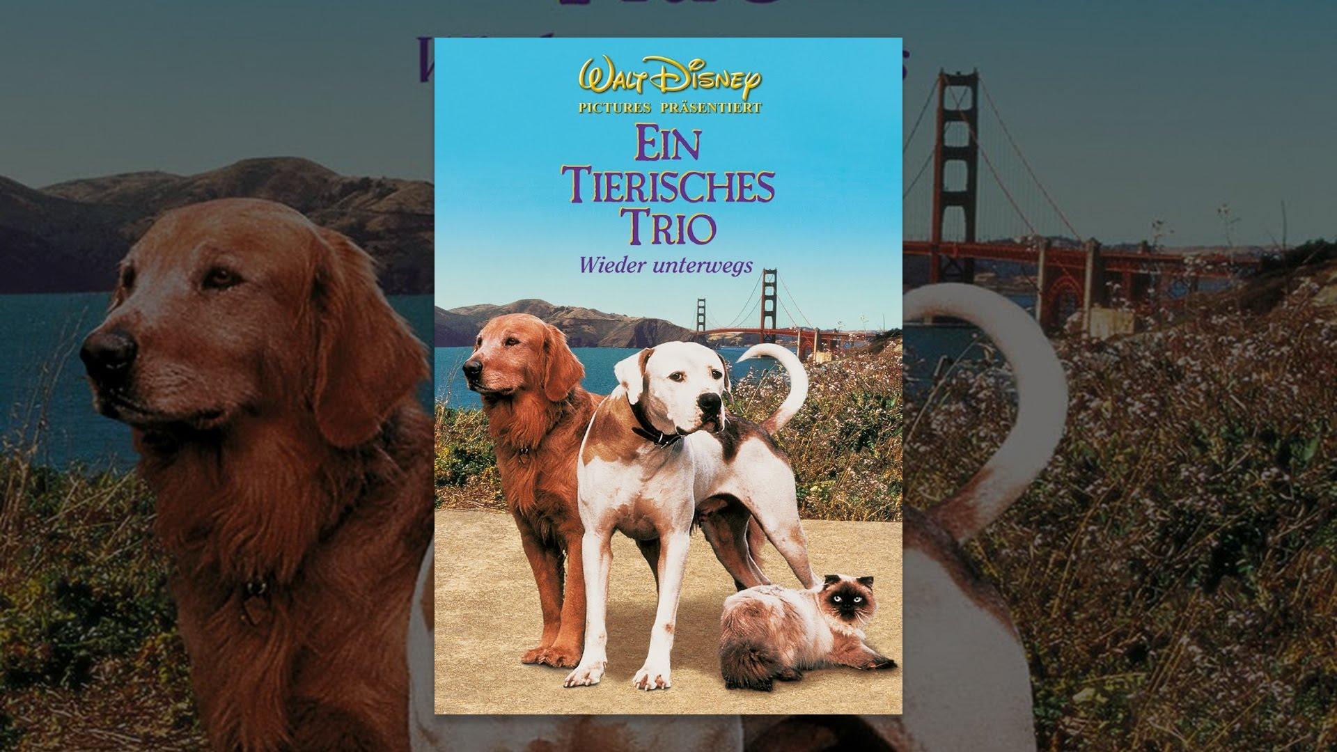 Ein Tierisches Trio Stream