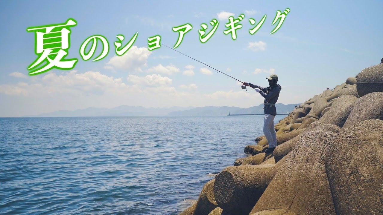 【初心者でも爆釣】夏の堤防ライトショアジギングが最高すぎる!!!【LSJ】
