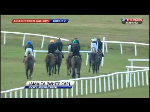 Ballydoyle gallops after racing at Curragh