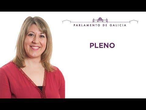 Pleno 6 Carmen Santos PSOE
