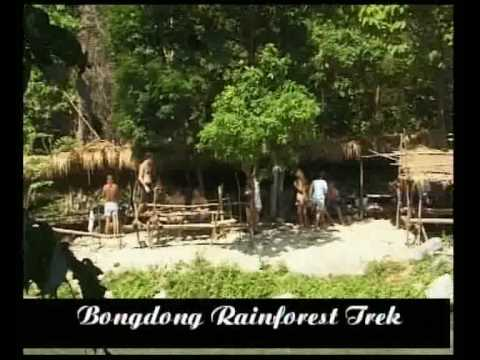 Puerto galera rainforest trek to bongdong Falls - philippines