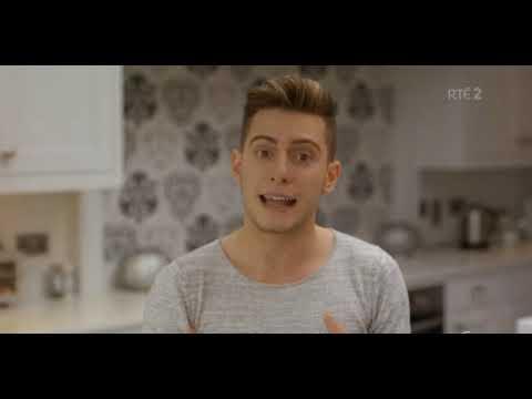 Irish gay referendum