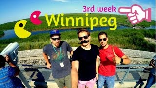 Учеба в Канаде| University of Winnipeg | EXPLORE CANADA конкурс(Все, что вам нужно знать про учебу в University of Winnipeg смотрите в блоге победителя конкурса Explore Canada! РЕГИСТРАЦИЯ..., 2015-07-27T11:45:12.000Z)