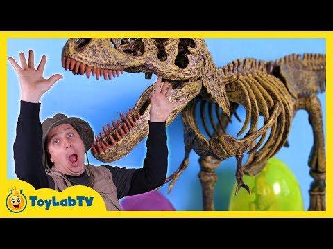 Jurassic World Dinosaur Toy & Easter Eggs Hunt Surprise Toys Opening of Dinos & T-Rex Kids Video
