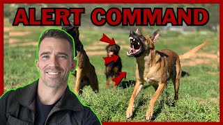 How to Train Your Dog to Alert on Command.
