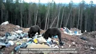 видео Работа вахта в Саха (Якутия)