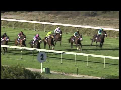 Depardieu - Betting World Cape Nursery (Gr III)