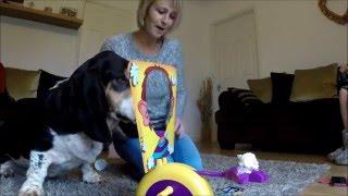 Marmite the Basset Hound plays Pie Face 2016 - Dog Pie face