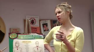 Teachers' Lounge   'Sex Ed'   MTV