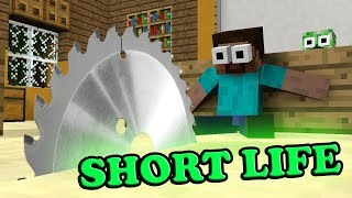 ✅ Monster School : SHORT LIFE CHALLENGE - Minecraft Animation