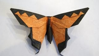 Intermediate Origami Butterfly