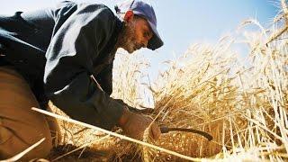 أهم مقومات التكامل الاقتصادي العربي
