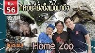 คนรักสัตว์ต้องดู Home Zoo คือโคตรมันส์  - เพื่อนรักสัตว์เอ้ย EP 56 [2/5]