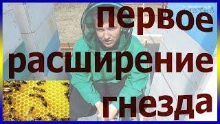 пчеловодство в украине видео