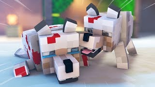 Minecraft Life Animation - Minecraft Wolf Life, Endermen Life, Creeper Life, - Mob Kids Life