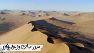 اجمل انشوده للنبي محمد - يارب صل على النبي واله  - صوت جميل يريح القلب