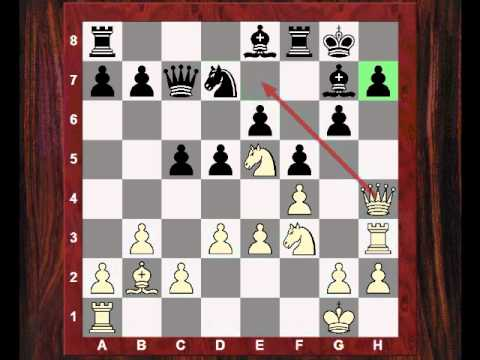 Chess Strategy: Evolution of Style #43 - Game vs Saemich, Carlsbad 1929 - Nimzo-Larsen Attack