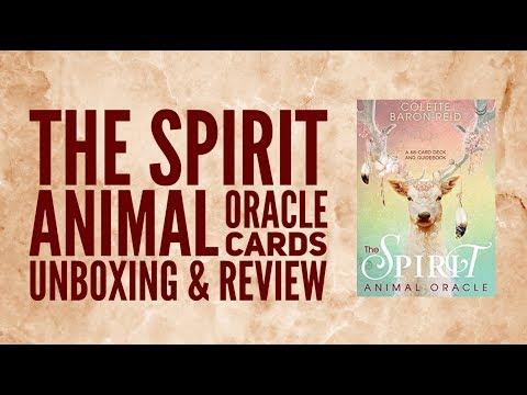 Review Animal Spirits