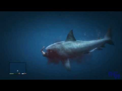 GTA V | Ataque de tiburon [Shark Attack] Videos De Viajes