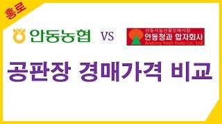 홍로 공판장 경매가격 비교 (안동농협 vs 안동청과)