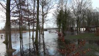 Hoog water in Westerwolde (Camping Wedderbergen, Wedde, Hamdijk, Nieuweschans)