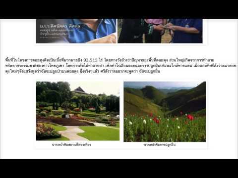 ราชวงศ์ไทย กับ ขบวนการค้ายาเสพติด ตอน 2