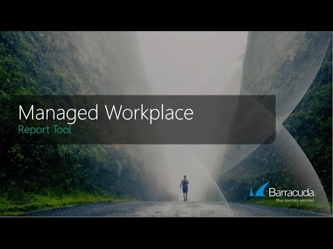 Report Tool | Managed Workplace RMM