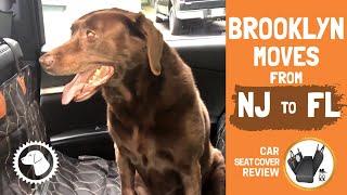 BROOKLYN MOVES from NJ to FL! 🐶 BONUS ► OKMEE CAR SEAT (Unboxing, Install, Review) #BrooklynsCorner