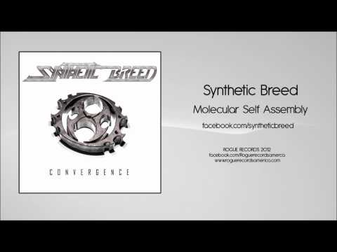 Synthetic Breed: Molecular Self Assembly [Rogue Records America]