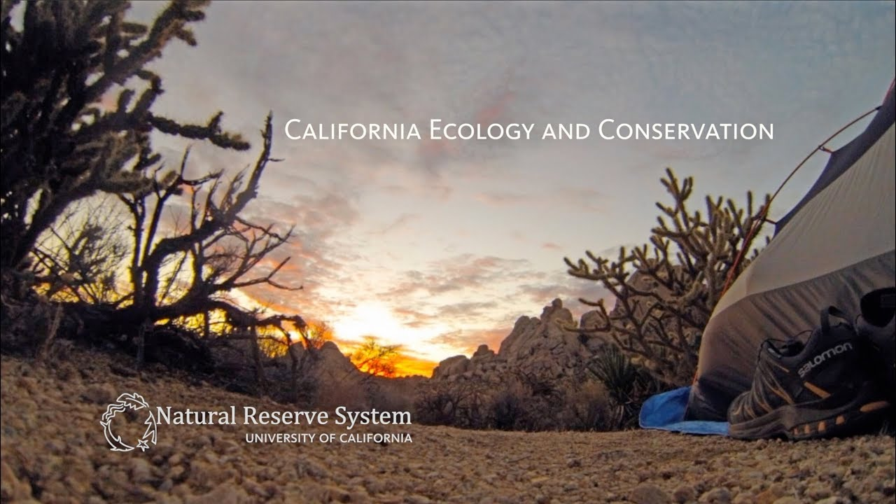 California Ecology and Conservation
