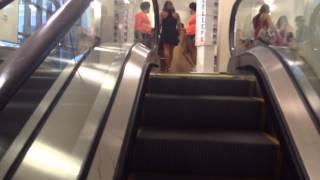 Schindler Escalators At DSW Shoes Atlantic Station In Atlanta, GA