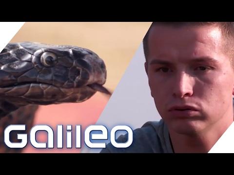 Aaron Troschke lernt die Tricks der Schlangenbeschwörer | Galileo Lunch Break