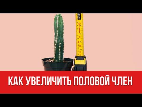 Как увеличить половой член || Юрий Прокопенко 18+